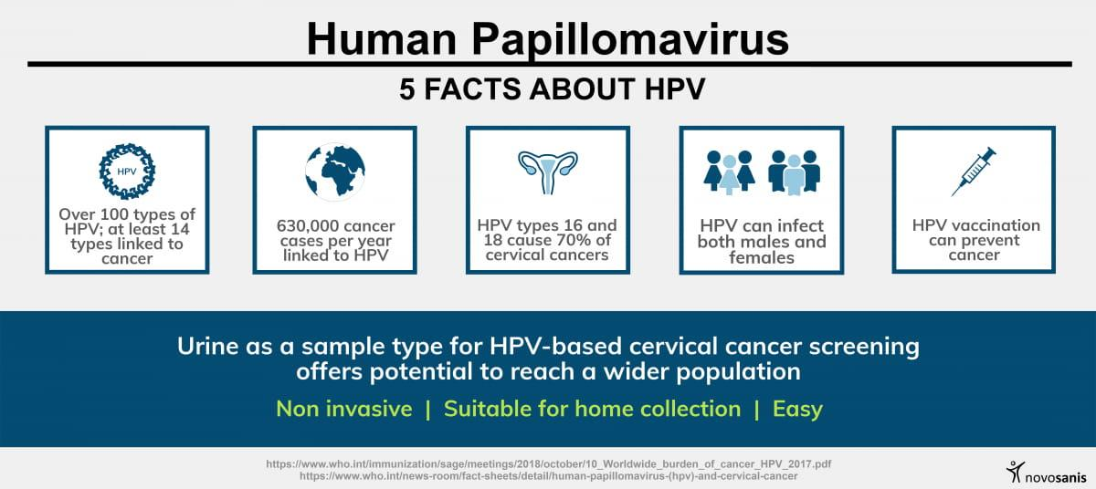 5 HPV facts (infographic)