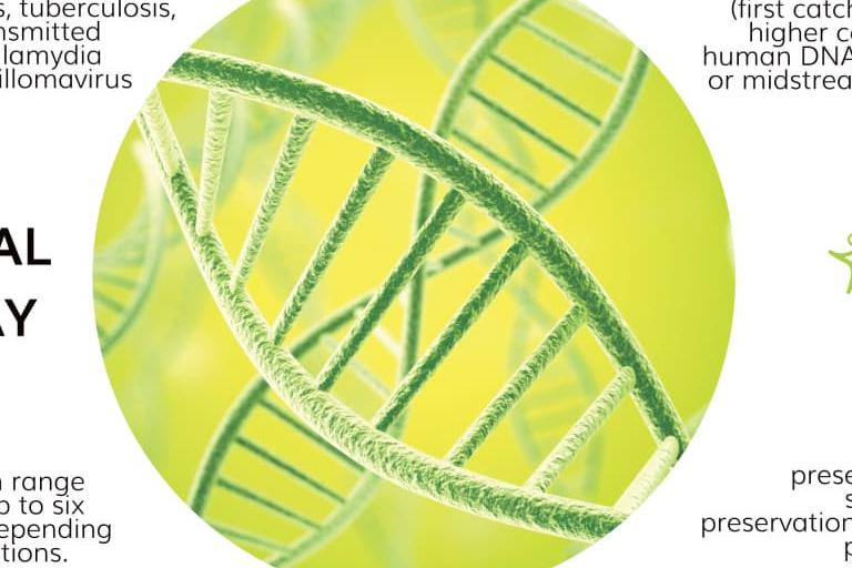 Facts about DNA in urine