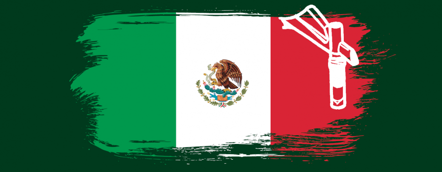 Mexico Registration